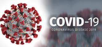 La Covid-19 peut-elle se transmettre par des pets ?