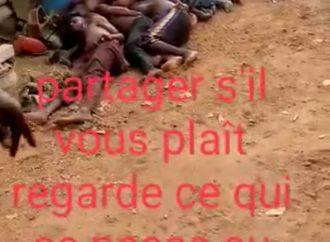 Faux cette vidéo n'a pas été tournée au Niger mais, au Nigéria